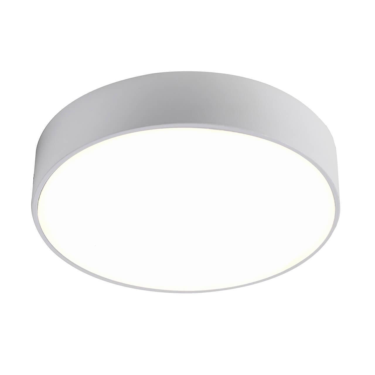 Накладной светильник Favourite 2065-24C, LED, 24 Вт цены