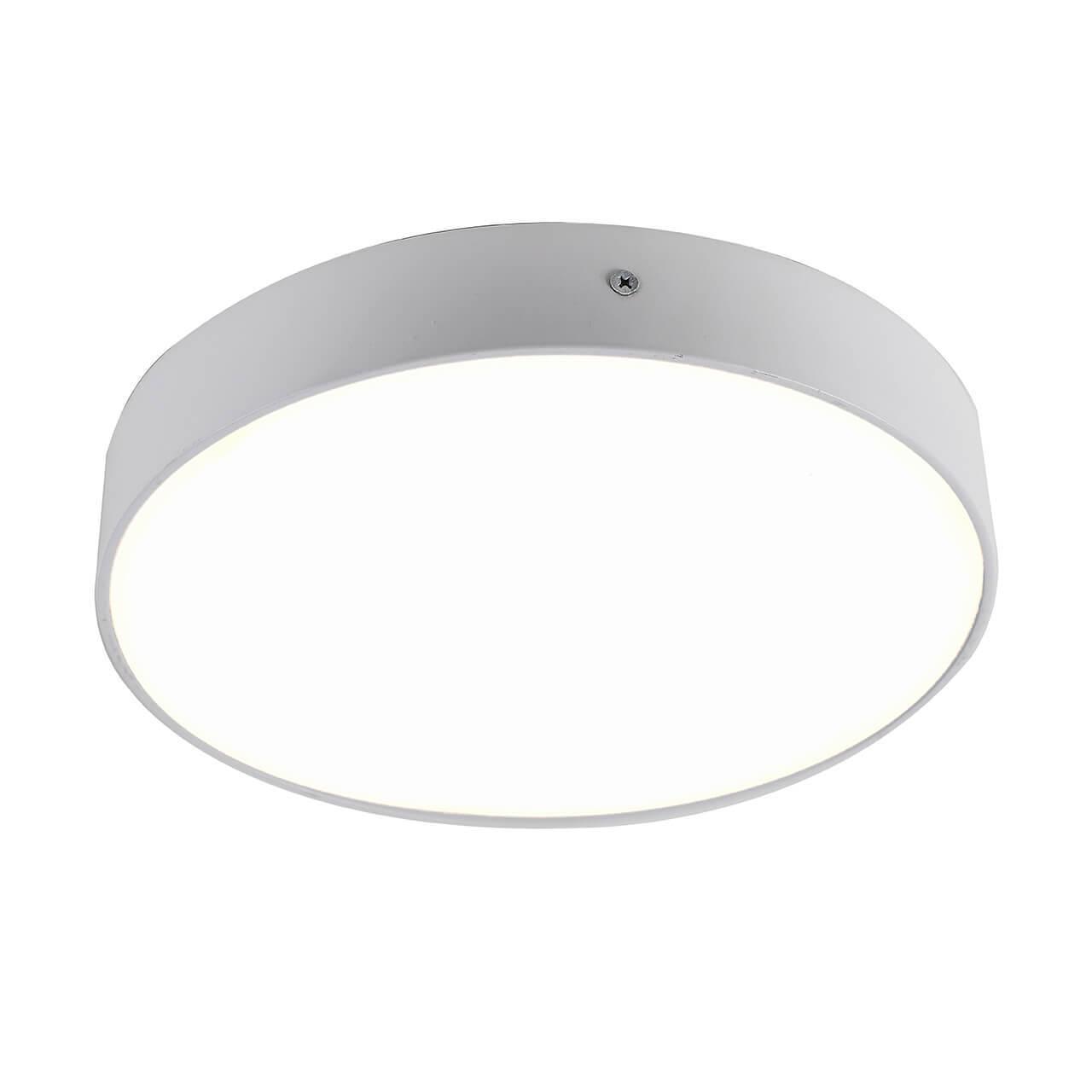 все цены на Потолочный светильник Favourite 2065-30C, белый онлайн
