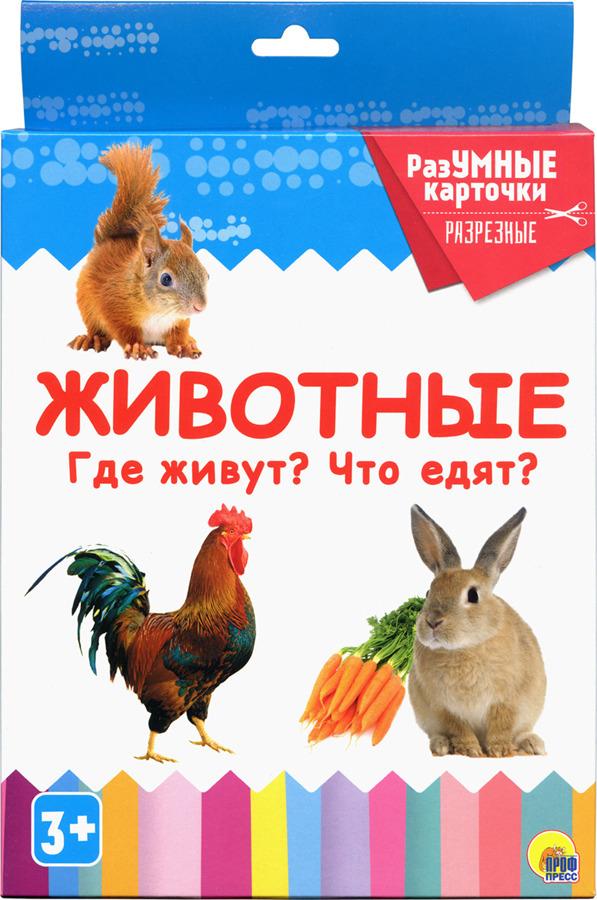 Животные. Где живут? Что едят? Разумные карточки