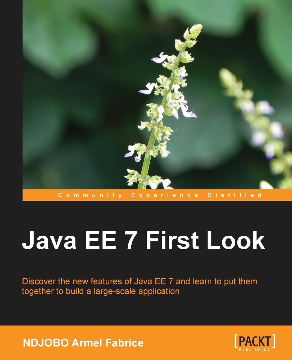 Ndjobo Armel Fabrice Java Ee 7 First Look