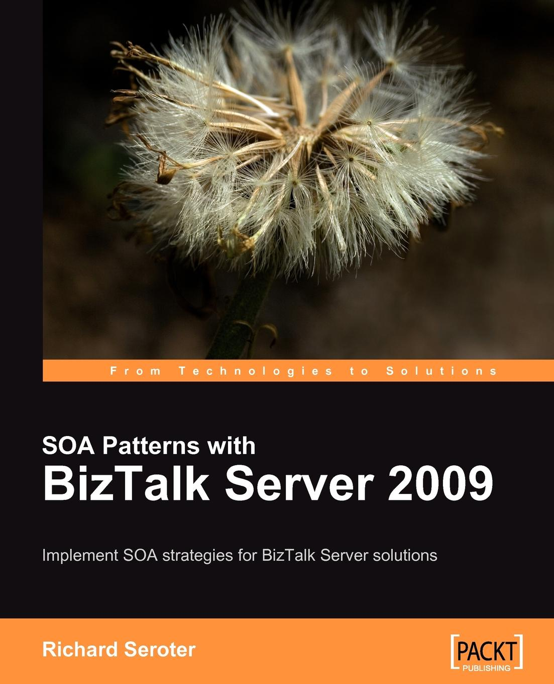 Richard Seroter SOA Patterns with BizTalk Server 2009 daniel woolston foundations of biztalk server 2006