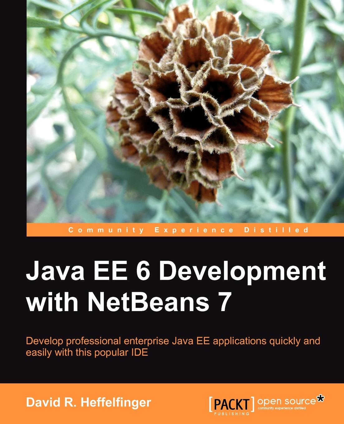 David Heffelfinger Java Ee 6 Development with Netbeans 7 deepak vohra advanced java ee development with wildfly