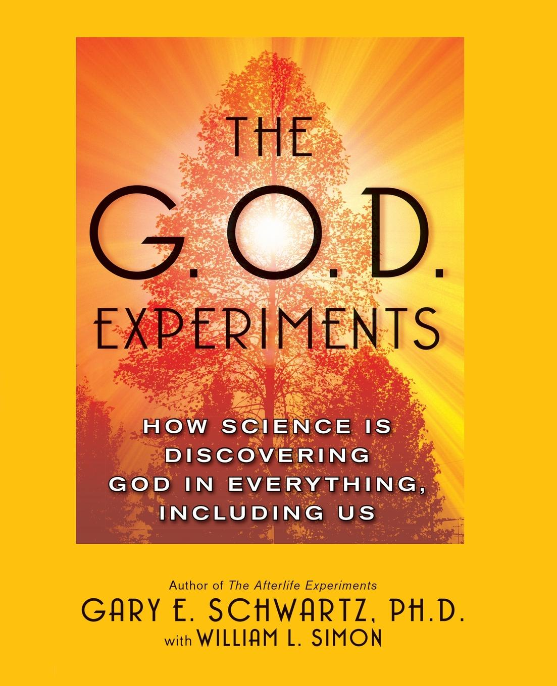 Gary E. Schwartz G.O.D. Experiments. How Science Is Discovering God in Everything, Including Us shadonna walker pearls class discovering god s beauty