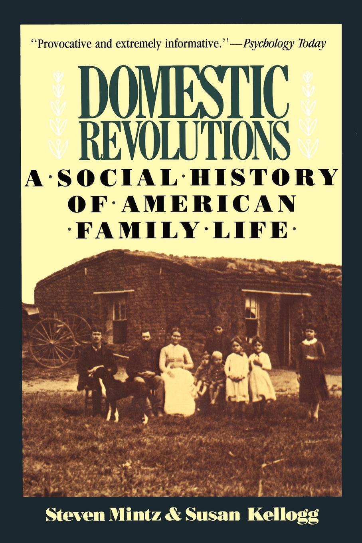 Steven Mintz, Susan Kellogg Domestic Revolutions. A Social History of American Family Life steven tuck l a history of roman art