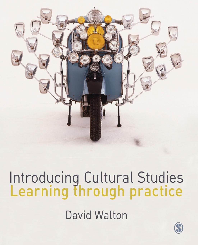 David Walton Introducing Cultural Studies louis komjathy introducing contemplative studies