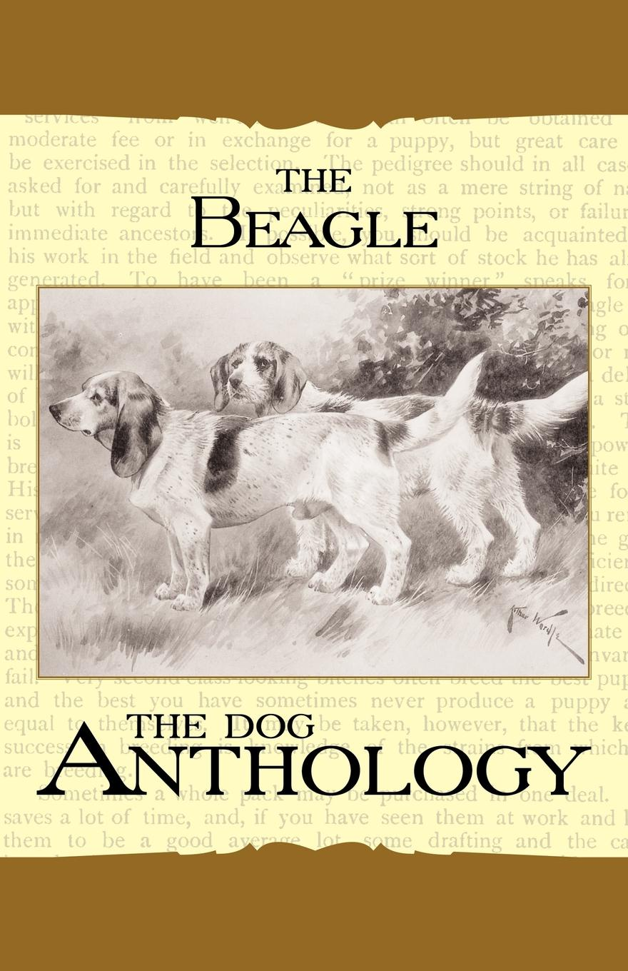 Фото - Various The Beagle - A Dog Anthology (A Vintage Dog Books Breed Classic) the new breed