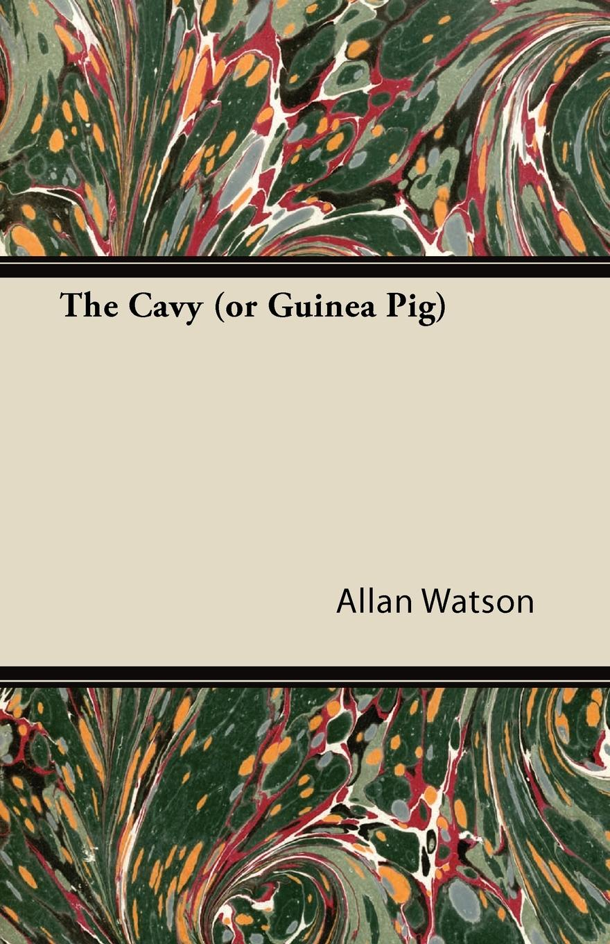 Allan Watson The Cavy (or Guinea Pig) a guinea pig romeo