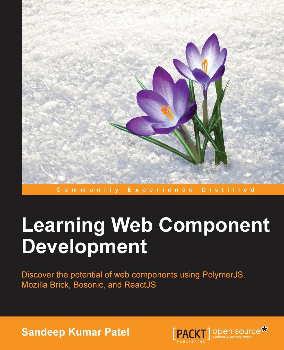 Sandeep Kumar Patel Learning Web Component Development kai nacke d web development