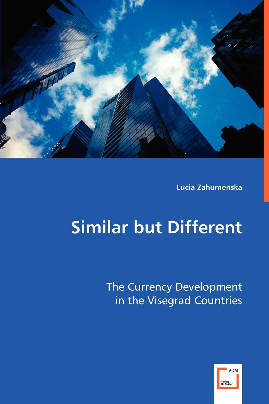 Lucia Zahumenska Similar but Different steven engels similar solutions to similar problems