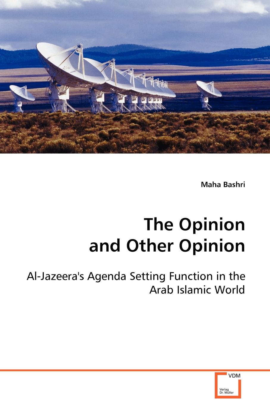 Maha Bashri The Opinion and Other Opinion ralph b levering american opinion and the russian alliance 1939 1945