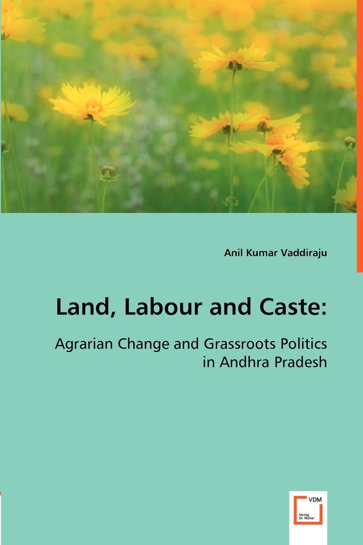 лучшая цена Anil Kumar Vaddiraju Land, Labour and Caste