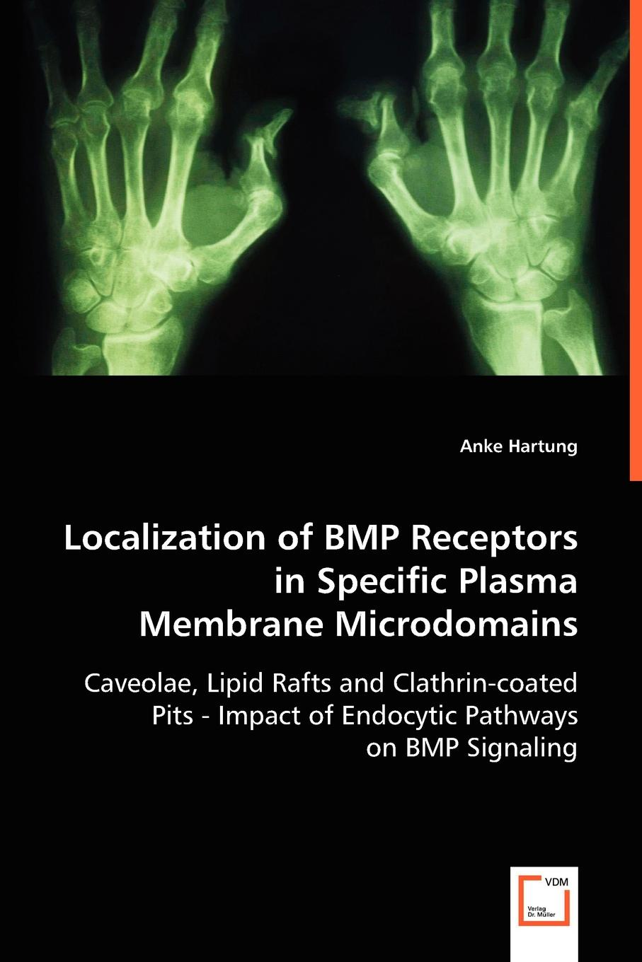Anke Hartung Localization of BMP Receptors in Specific Plasma Membrane Microdomains велонасос bbb windwave bmp 54