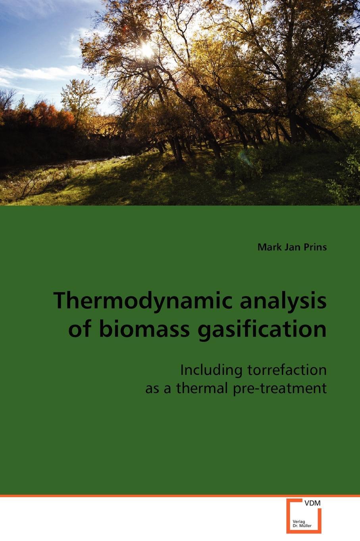 Mark Jan Prins Thermodynamic analysis of biomass gasification zahra jeirani thermodynamic investigation of wax precipitation