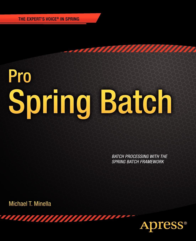 Michael Minella Pro Spring Batch