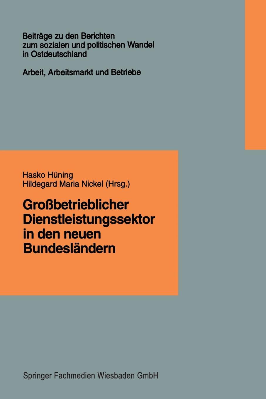 Hasko Huning Grossbetrieblicher Dienstleistungssektor in Den Neuen Bundeslandern. Finanzdienstleistungen, Einzelhandel, Krankenpflege sozialer und demographischer wandel in den neuen bundeslandern