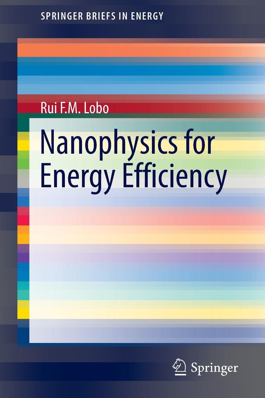 Фото - Rui Filipe Lobo Nanophysics for Energy Efficiency rui r