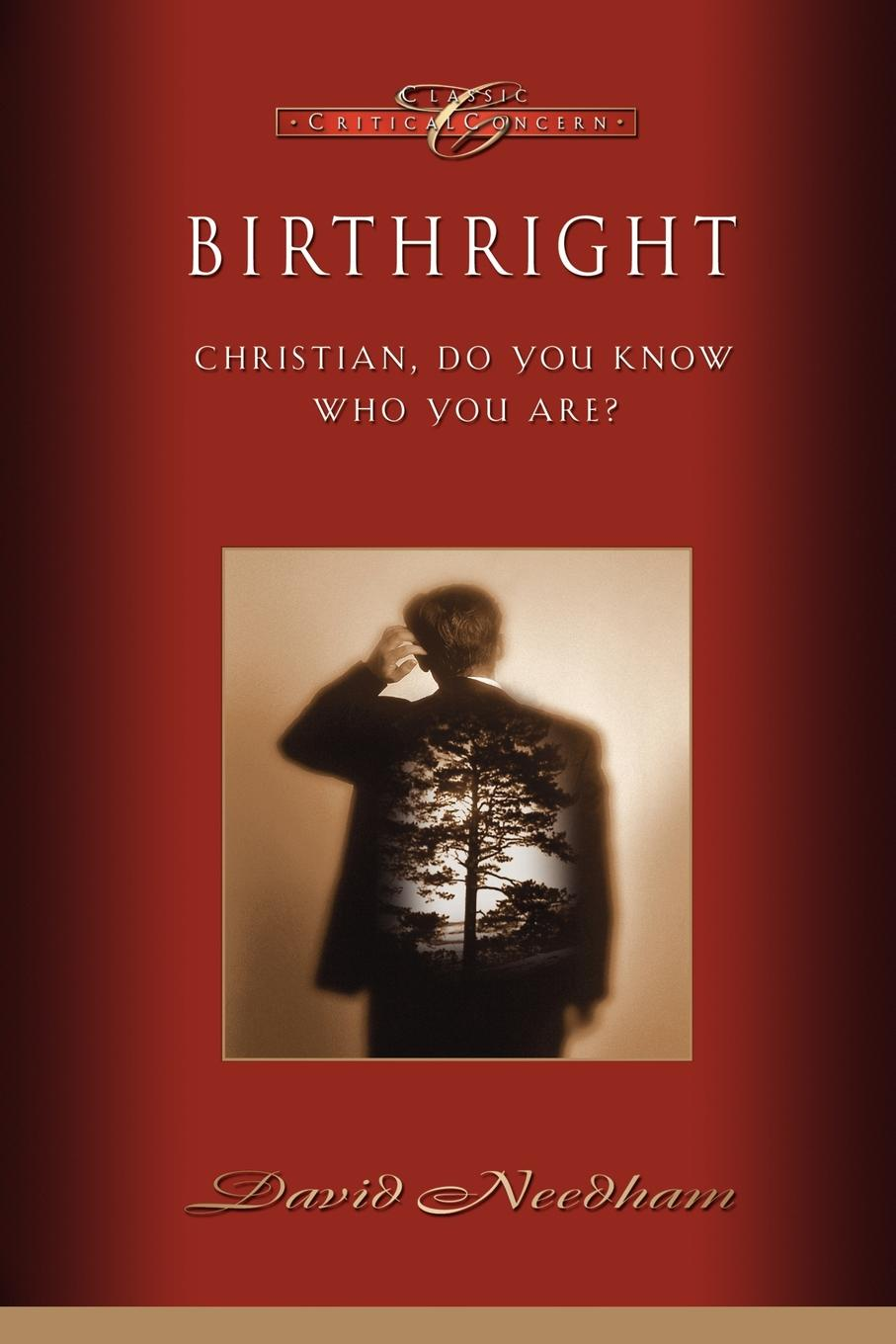 David C. Needham Birthright bronwyn williams beckett s birthright