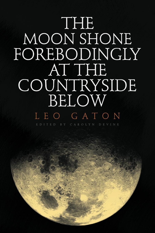Leo Gaton The Moon Shone Forebodingly at the Countryside Below at full moon 2