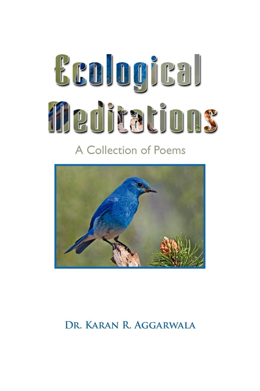 Karen R. Aggarwala, Dr Karan R. Aggarwala Ecological Meditations being ecological