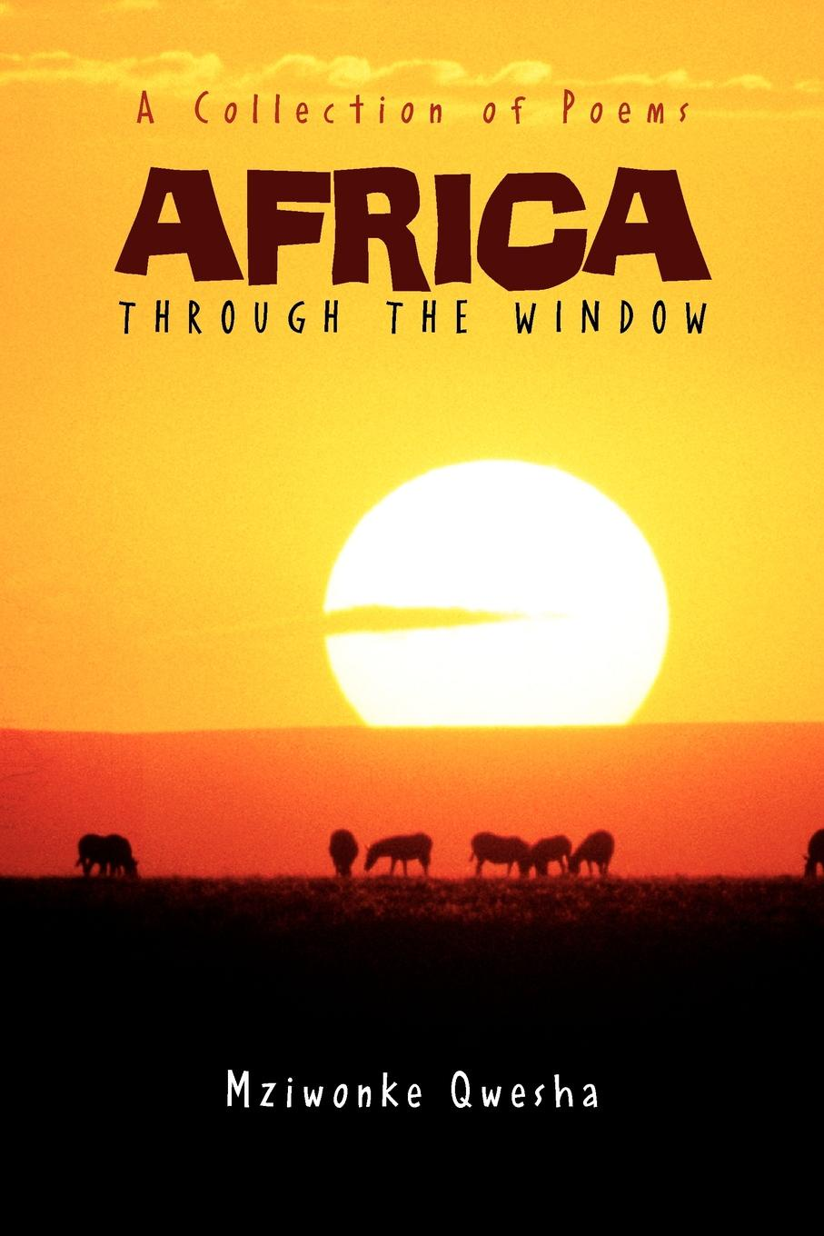 Mziwonke Qwesha Africa. Through the Window ion miclea africa