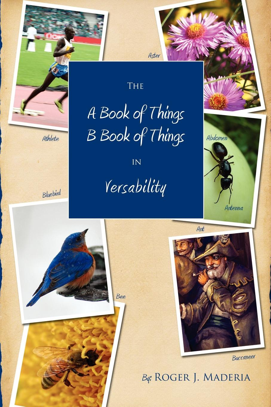 Roger Maderia The a Book of Things, B Things