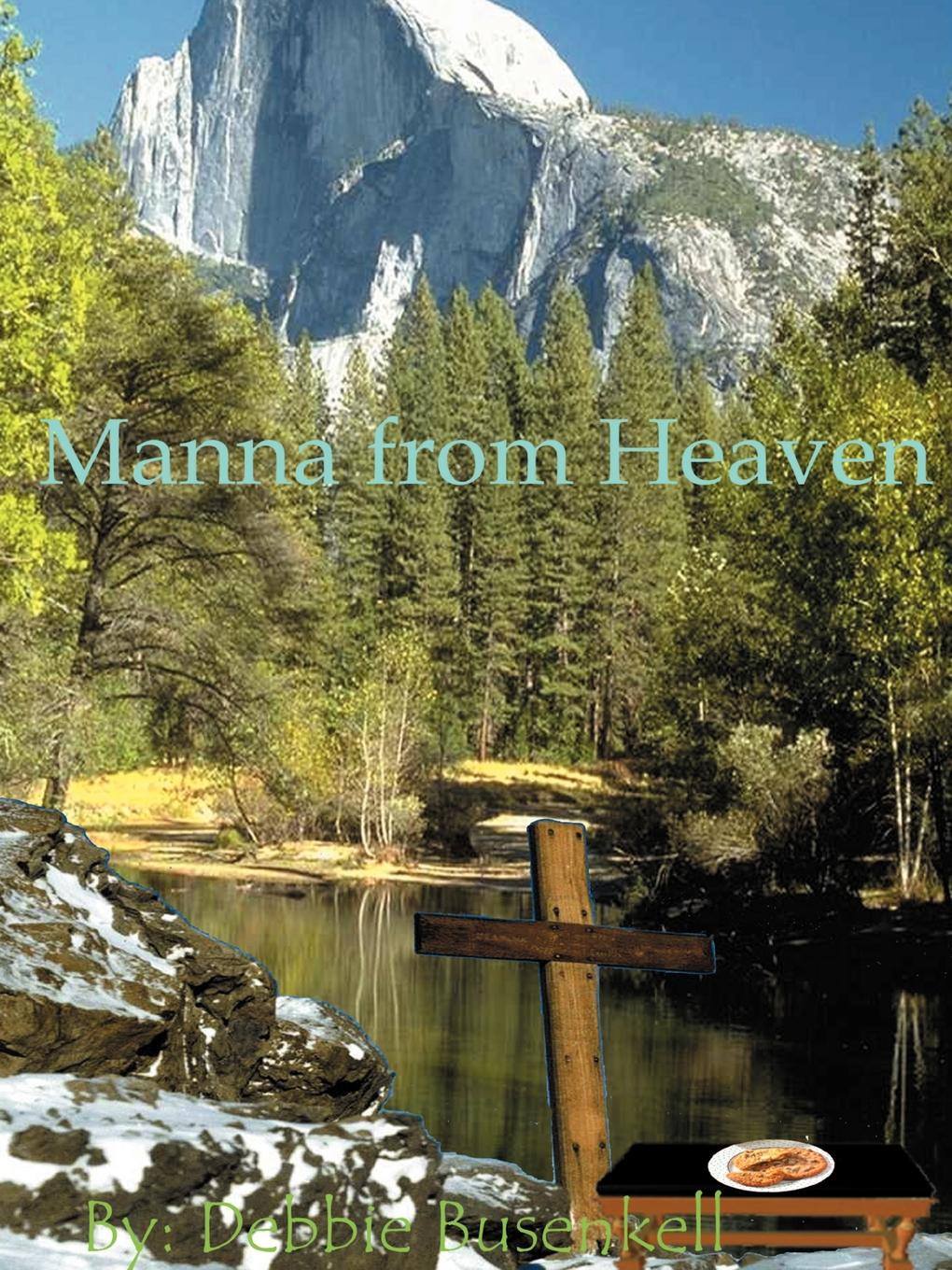 Debbie Busenkell Manna from Heaven. Delicious Low-Fat Recipes Inspired by Great Bible Stories sallie stone 25 delicious soup recipes