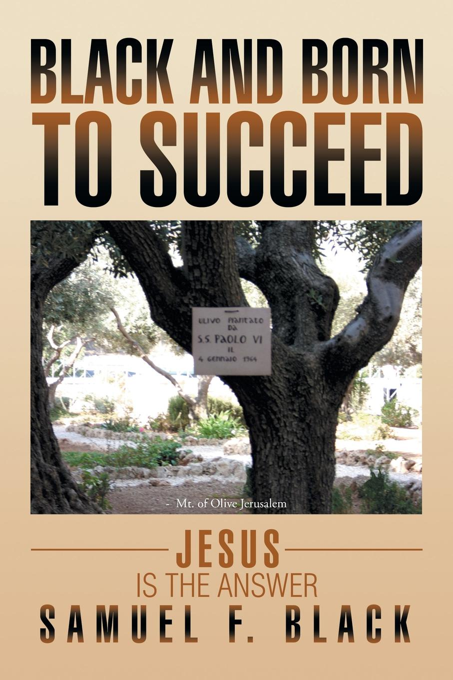Samuel F. Black Black and Born to Succeed. Jesus Is the Answer цена и фото