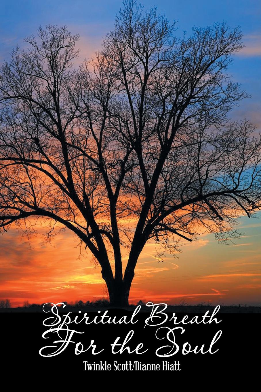 Twinkle Scott, Dianne Hiatt Spiritual Breath for the Soul. Stories That Heal the Heart dianne drake the baby who stole the doctor s heart