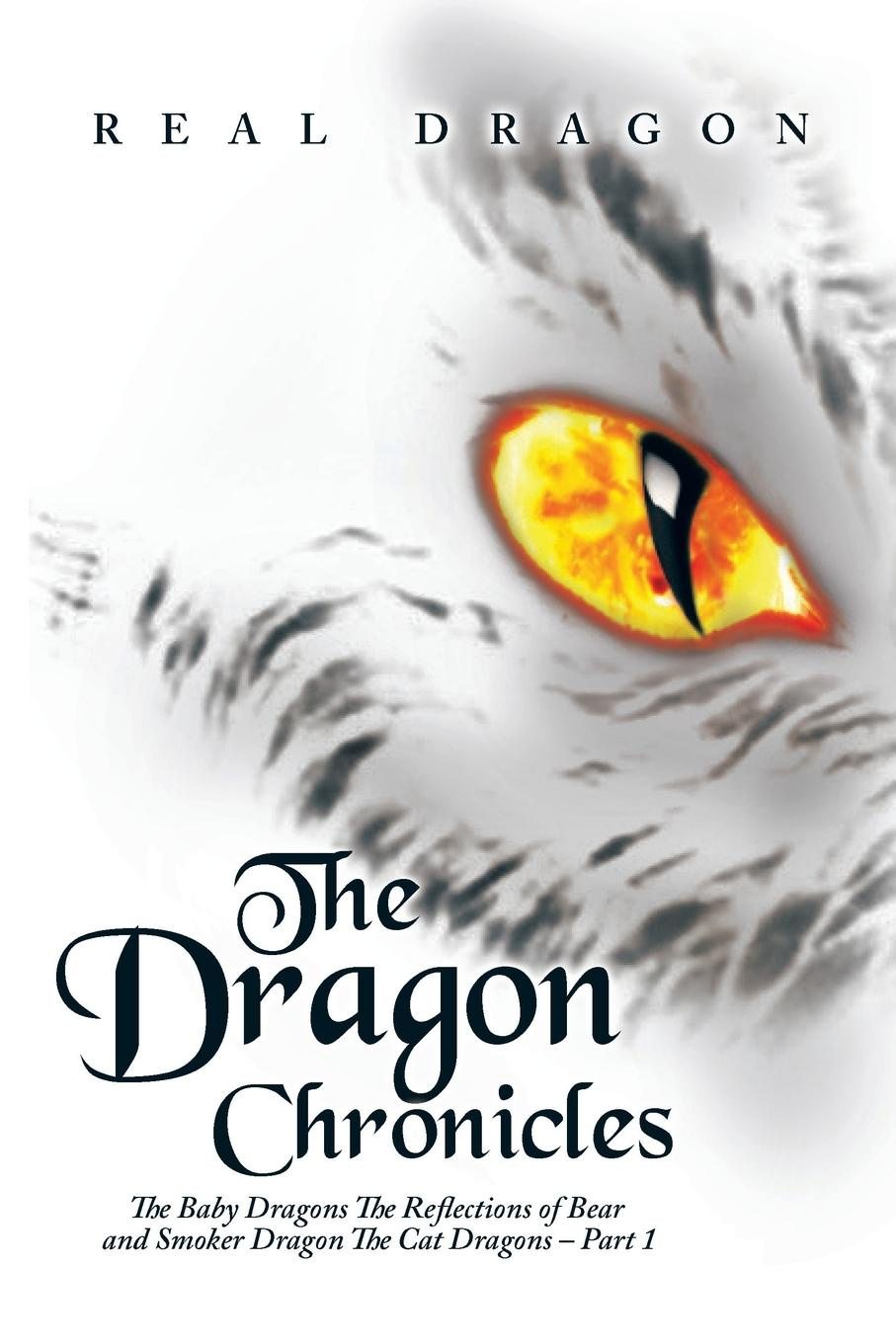 Real Dragon The Dragon Chronicles. The Baby Dragons The Reflections of Bear and Smoker Dragon The Cat Dragons - Part 1 george and the dragon