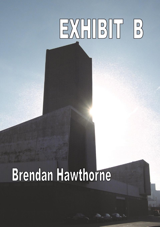 Brendan Hawthorne Exhibit B