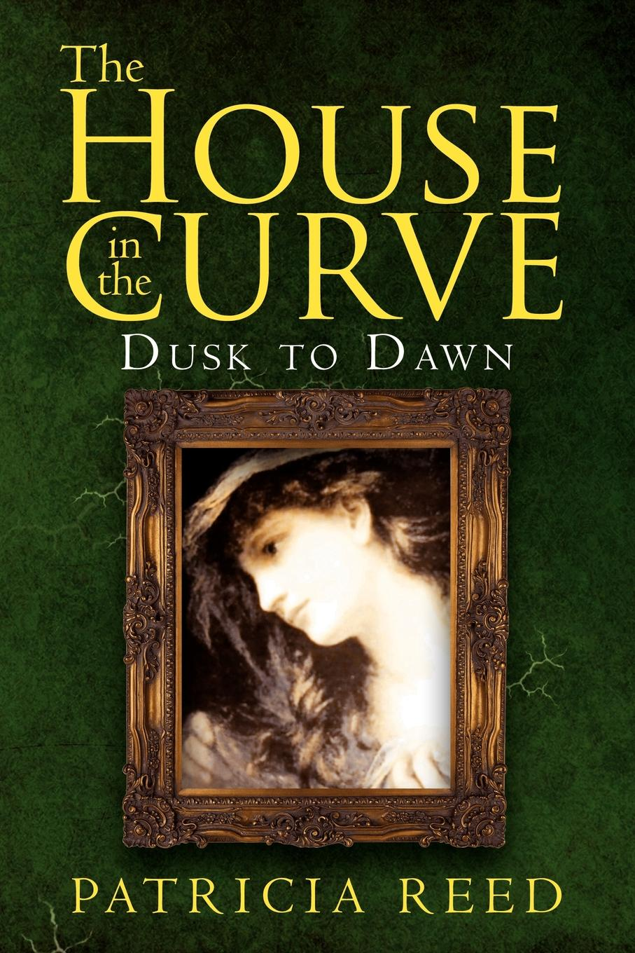 Patricia Reed The House in the Curve. Dusk to Dawn