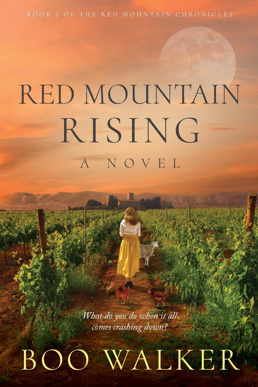Boo Walker Red Mountain Rising. A Novel цена 2017