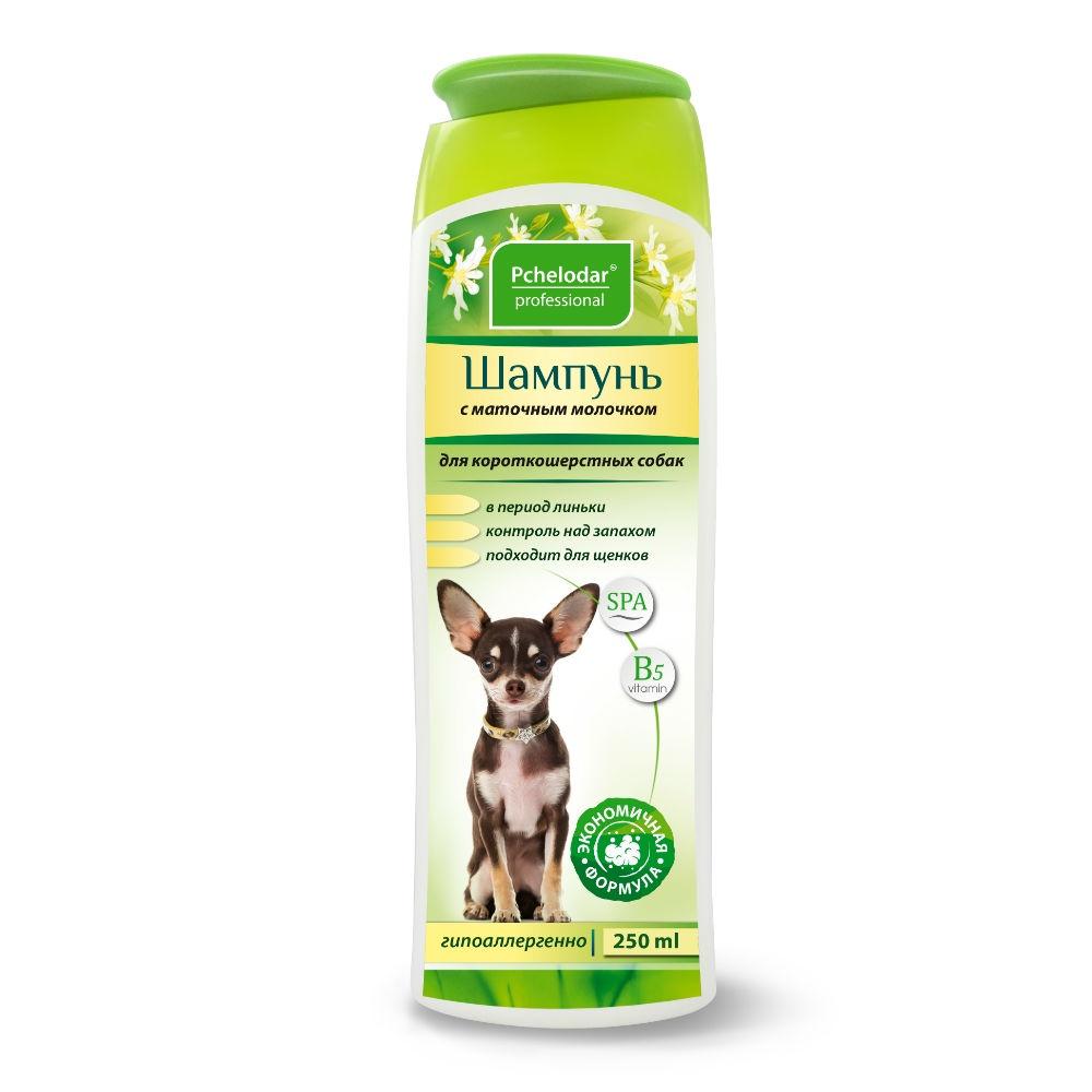 Пчелодар Шампунь с маточным молочком для короткошерстных собак 250мл шампунь для животных пчелодар 63290