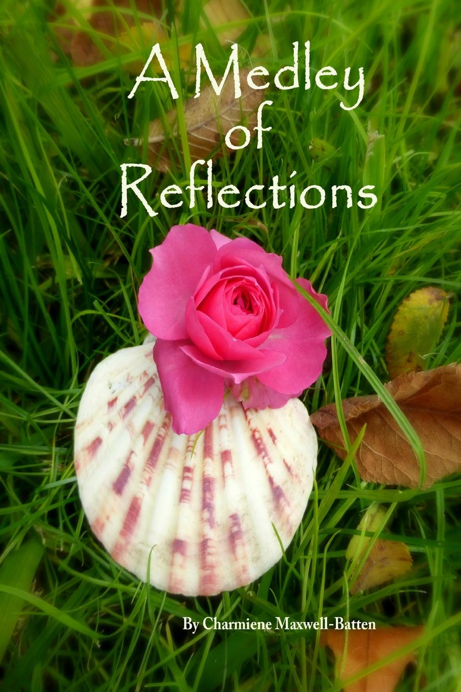 Charmiene Maxwell-Batten A Medley of Reflections philosophical reflections