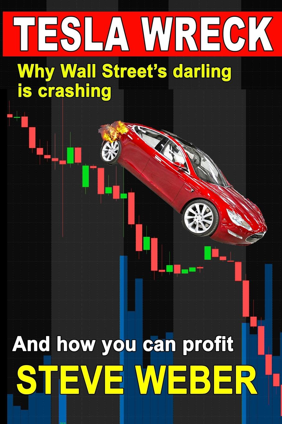 Tesla Wreck. Why Wall Street`s Darling is Crashing and How You Can Profit