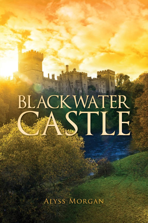 цены Alyss Morgan Blackwater Castle