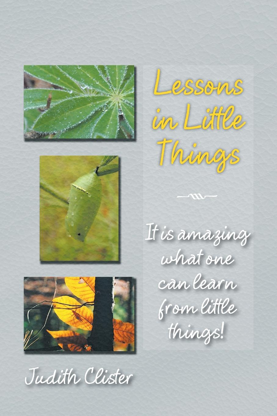 Judith Clister Lessons in Little Things. It Is Amazing What One Can Learn from Little Things! aleksandr strannik the most amazing things from the transpersonal psychologist's practice