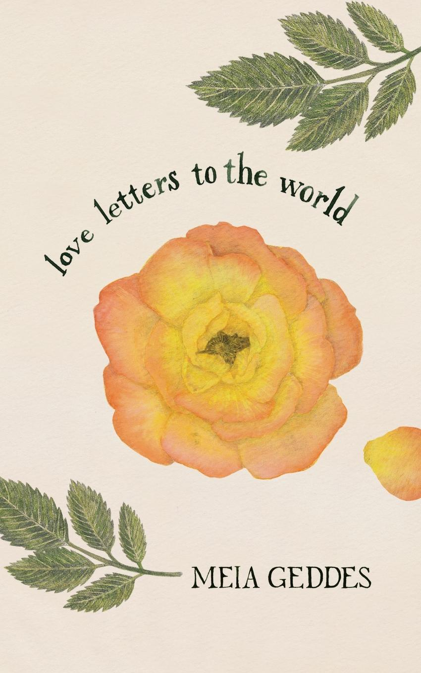 Meia Geddes Love Letters to the World suzanne brockmann unstoppable love with the proper stranger letters to kelly