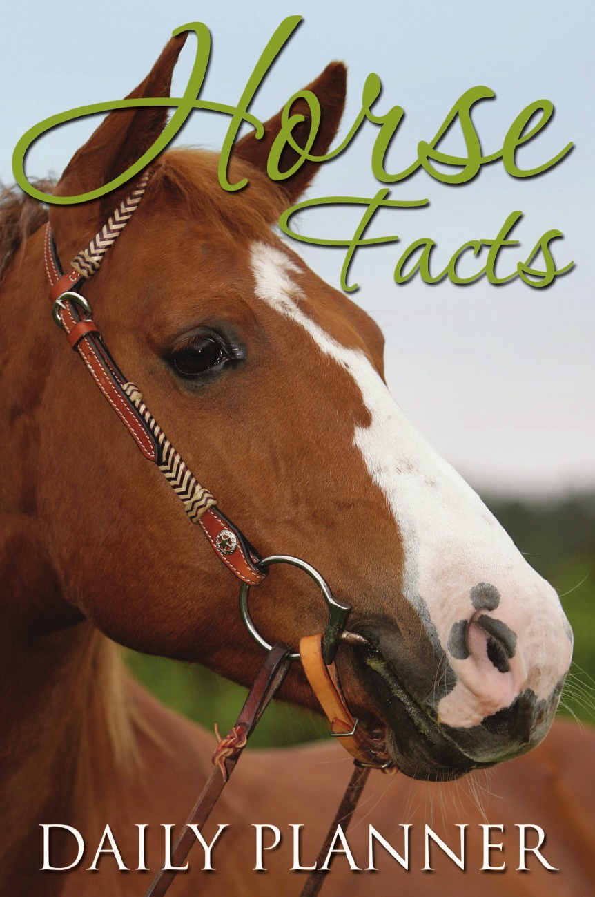 Speedy Publishing LLC Horse Facts Daily Planner daily complete formula