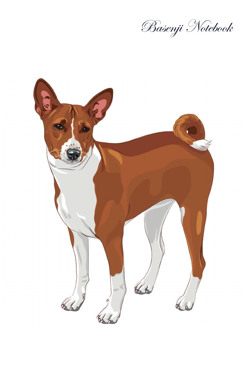 Pet Care Inc. Basenji Notebook Record Journal, Diary, Special Memories, To Do List, Academic Notepad, and Much More brand new original adda ab07005hx07kb00 dc5v 0 40a qat10 notebook fan