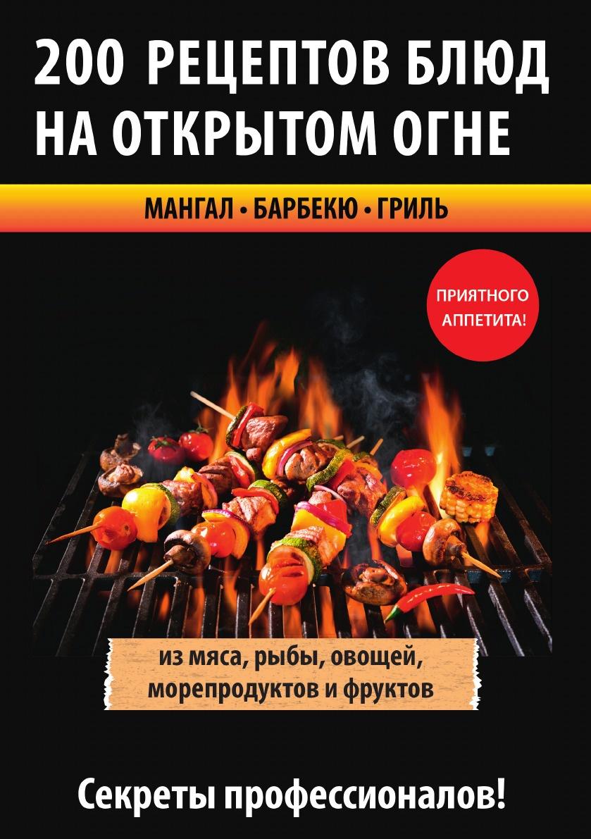 В. С. Водяницкий 200 рецептов блюд на открытом огне водяницкий в с сост 200 рецептов блюд на открытом огне