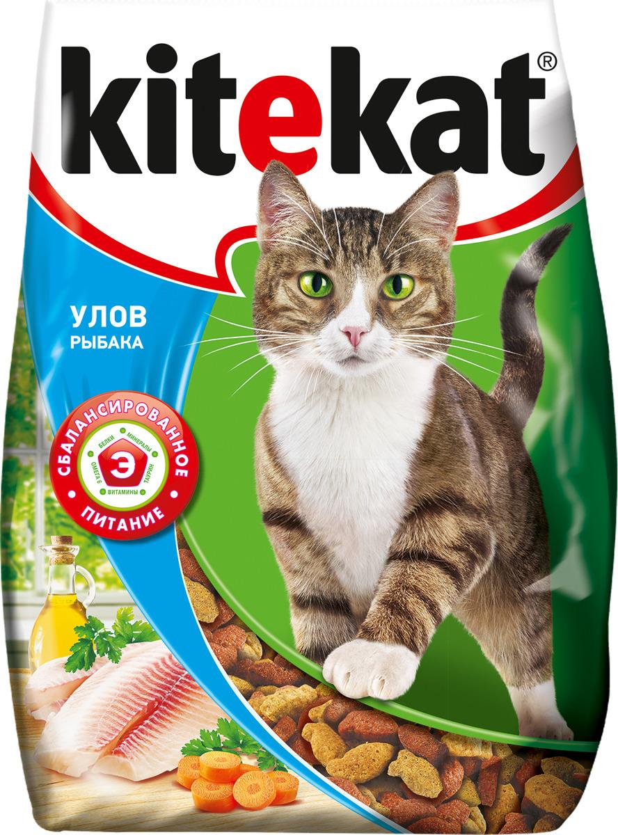 Корм сухой для кошек Kitekat, улов рыбака, 350 г сухой корм kitekat телятинка аппетитная для кошек 15кг 10132155