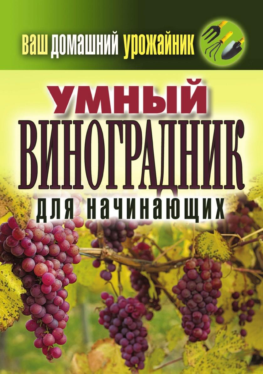 Животовская Екатерина Васильевна Ваш домашний урожайник. Умный виноградник для начинающих