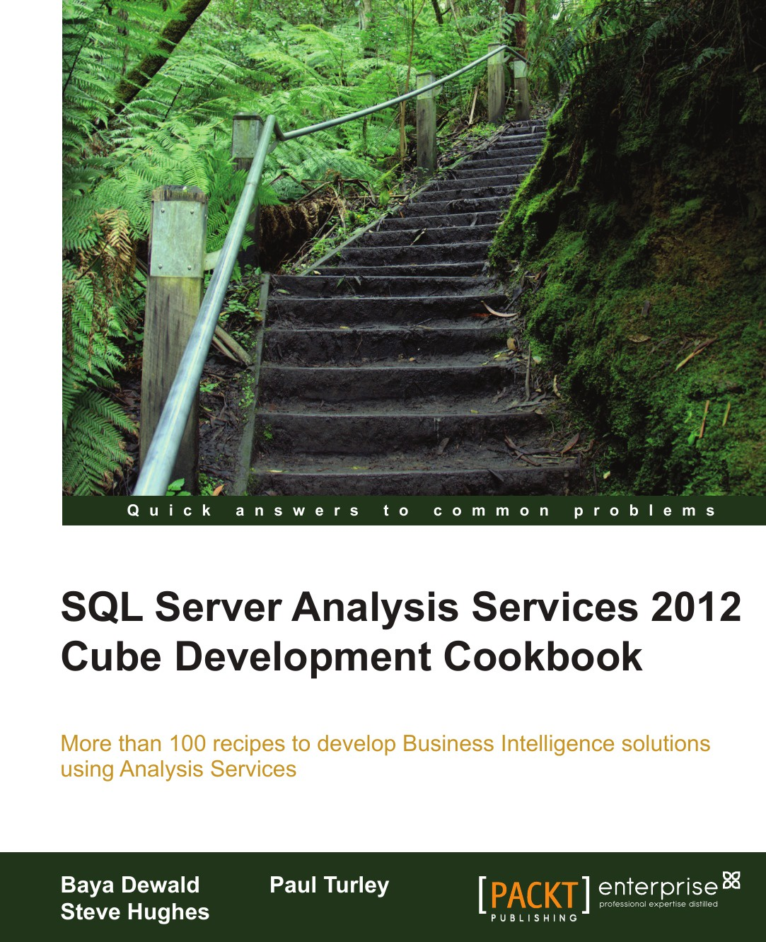 Baya Dewald, Steve Hughes, Paul Turley SQL Server Analysis Services 2012 Cube Development Cookbook alexander makarov yii application development cookbook 2nd edition