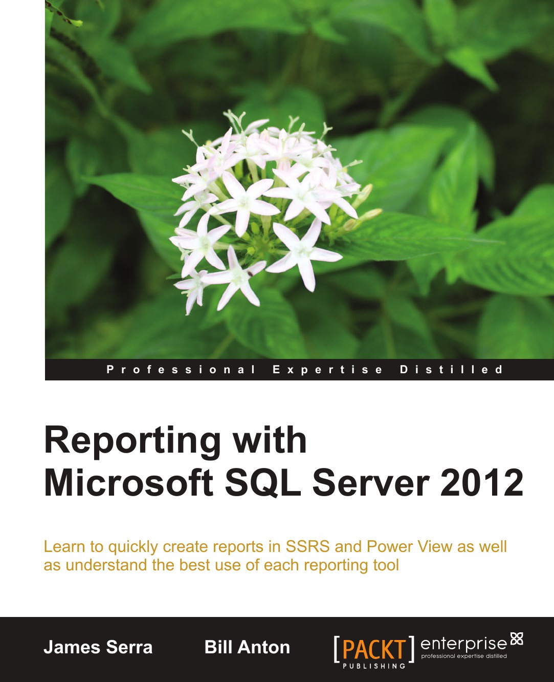 James Serra, Bill Anton Reporting with Microsoft SQL Server 2012 patrick leblanc microsoft sql server 2012 bible