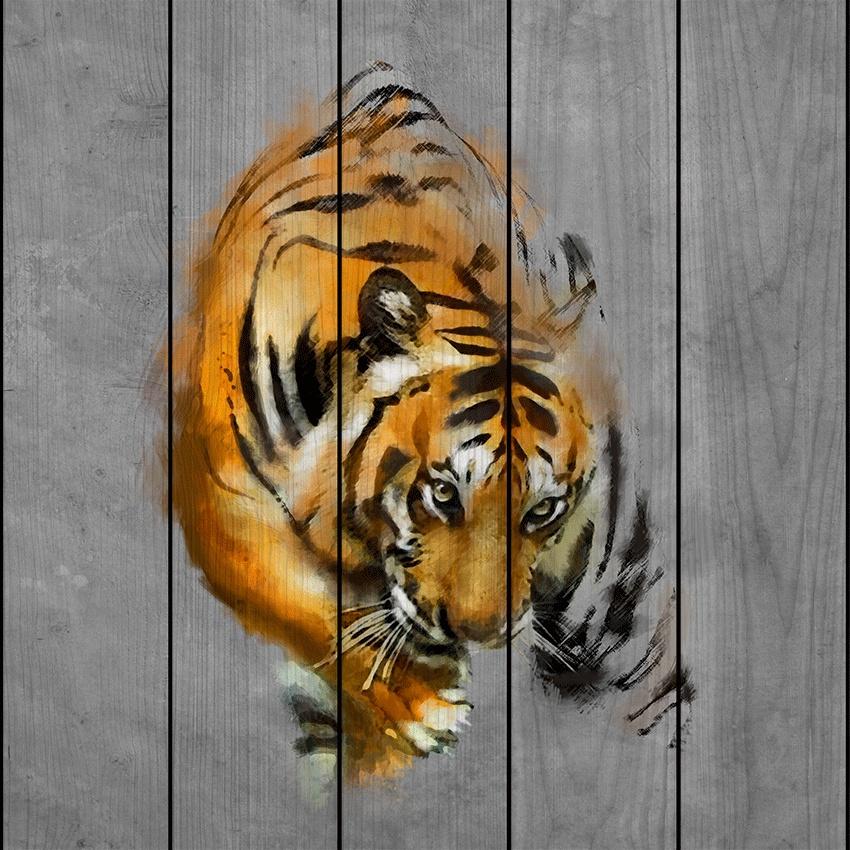 Крадущийся тигр 40 х 40 см картина дня