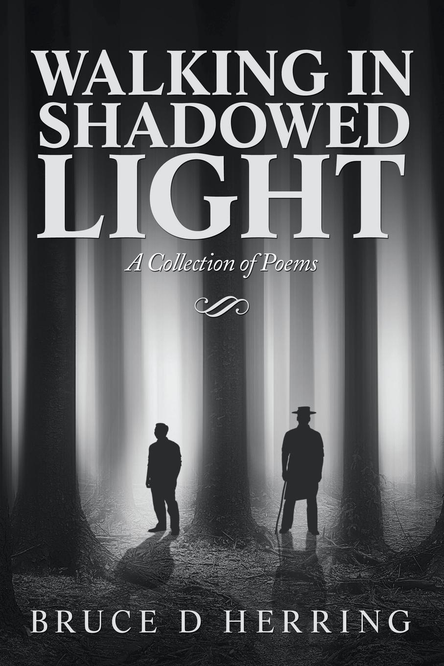 Bruce D Herring Walking in Shadowed Light. A Collection of Poems i was a third grade spy