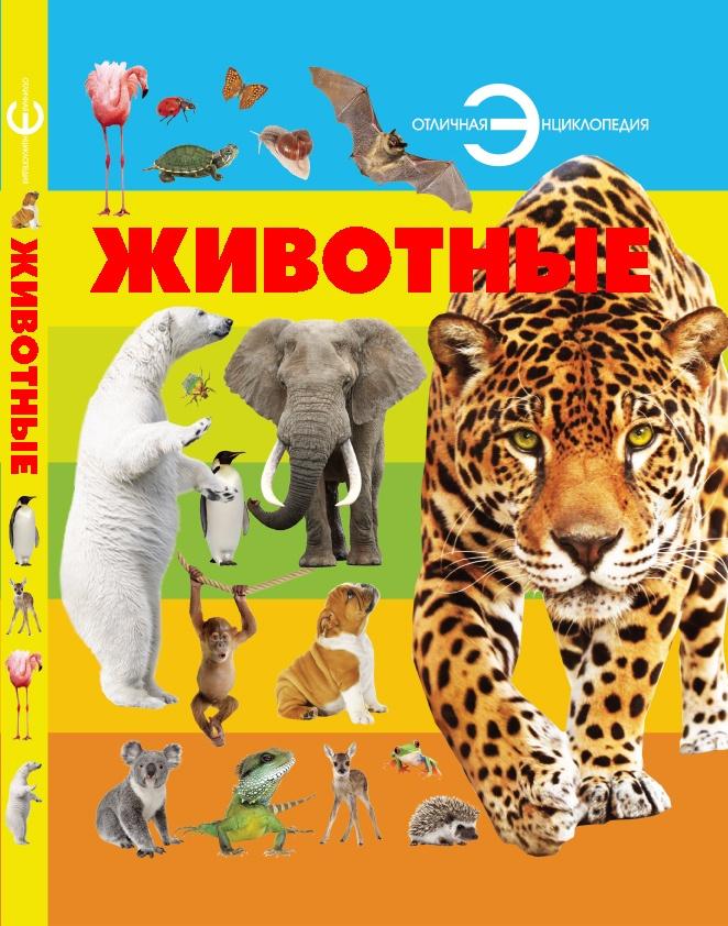 без автора Животные