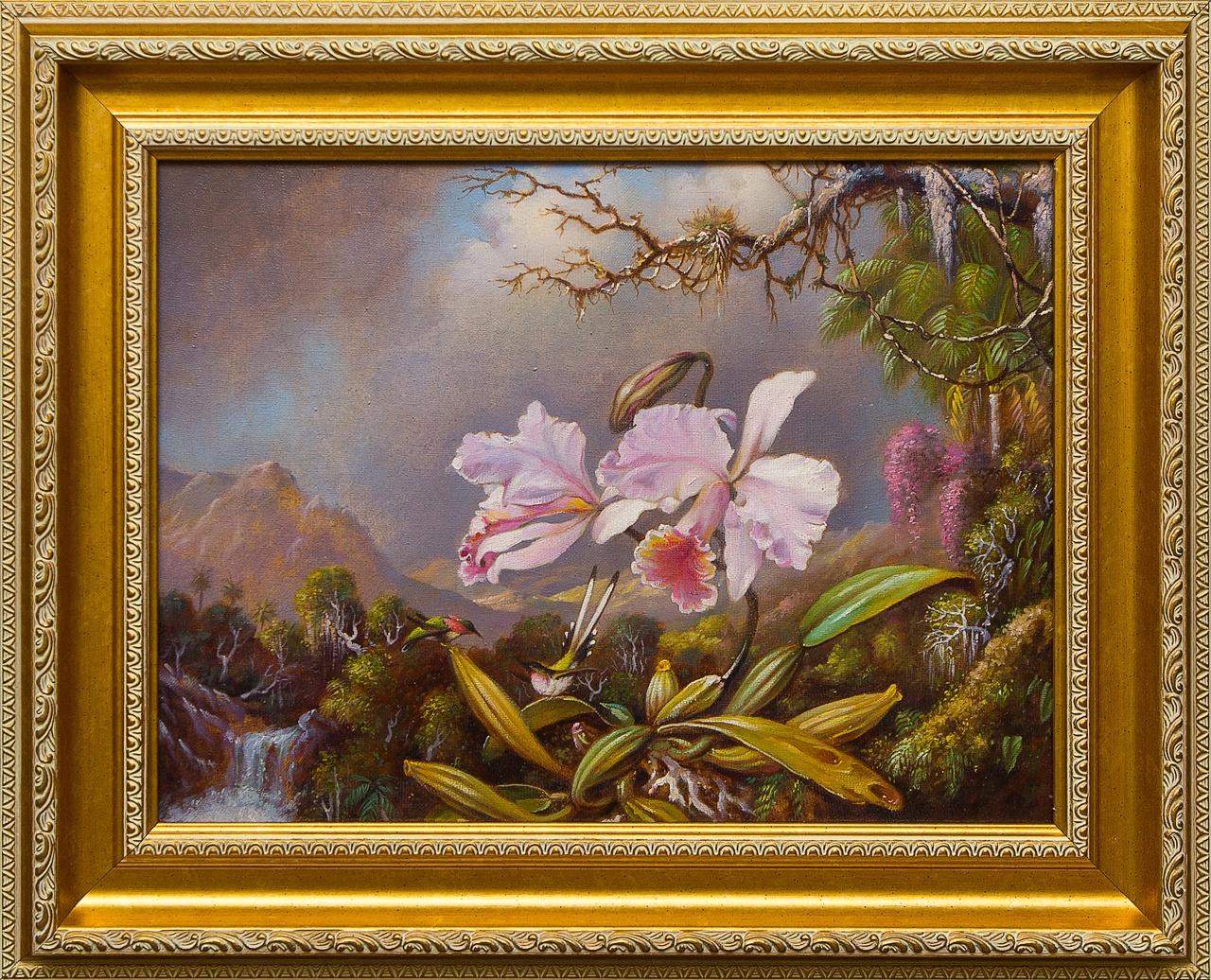 Две цветущие орхидеи е катерли некрасов