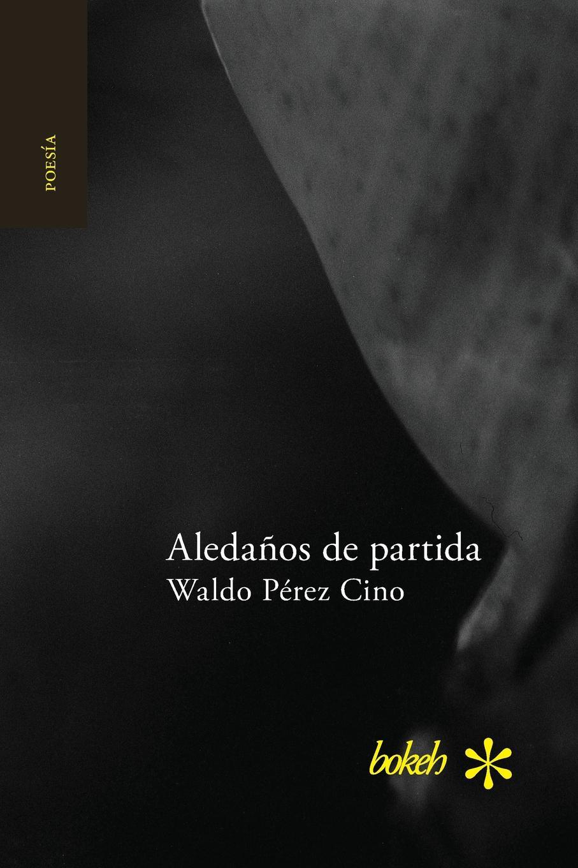 Waldo Pérez Cino Aledanos de partida rodríguez pérez miguel alberto paralisis vocal valoracion y rehabilitacion